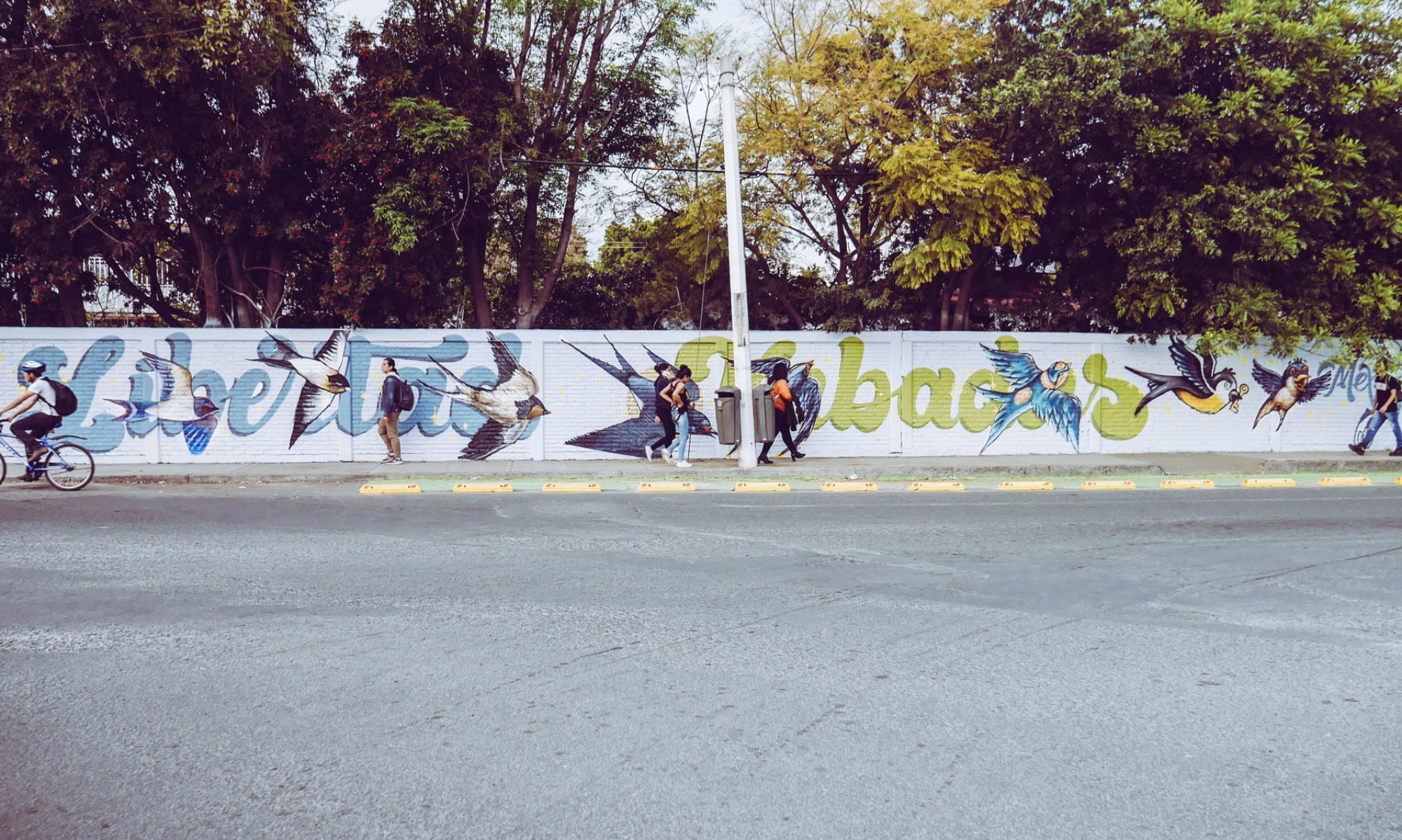 Nueve Arte Urbano